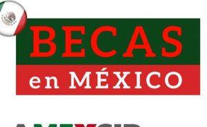 Optar Por Las Becas De AMEXCID En México