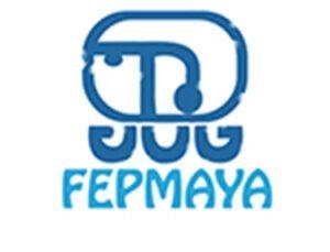 Programa De Becas Mayas-Fepmaya